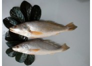 Poa Fish